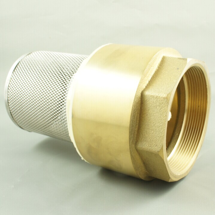 Seagull brass check valves y strainers foot
